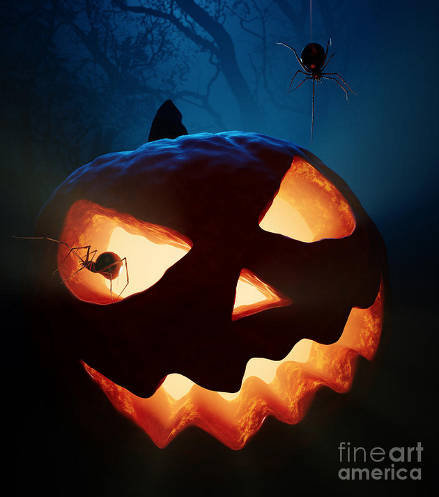 Halloween Pumpkin And Spiders by Johan Swanepoel